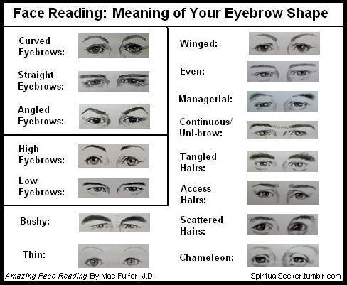 Face reading guide. Basics, tips and secrets. | Leading ...